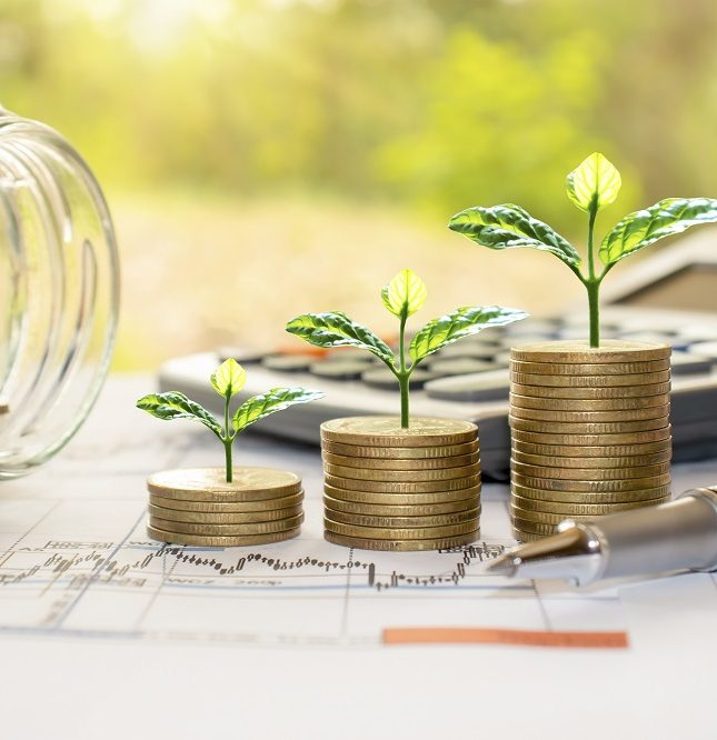 rentabilidad económica salud financiera empresa gestión empresarial OGE Consultores