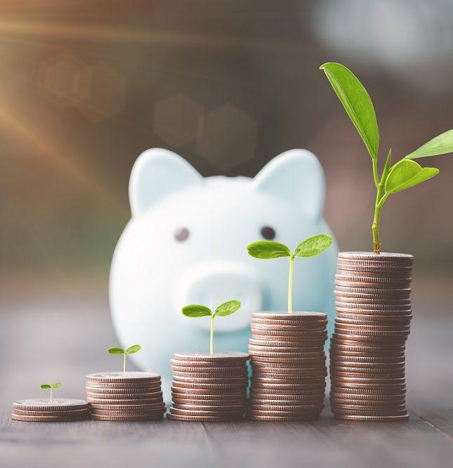 business angels capital semilla financiación externa proyecto empresarial emprendedores OGE Consultores
