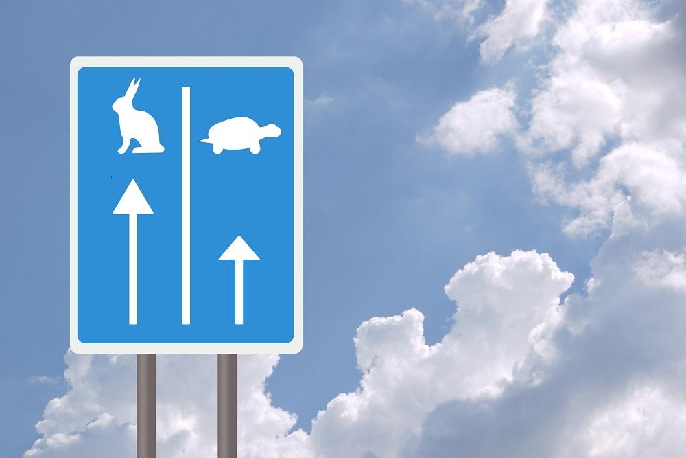 reflexiones empresariales gestión empresarial la tortuga y la liebre implicación esfuerzo planificación estratégica OGE Consultores