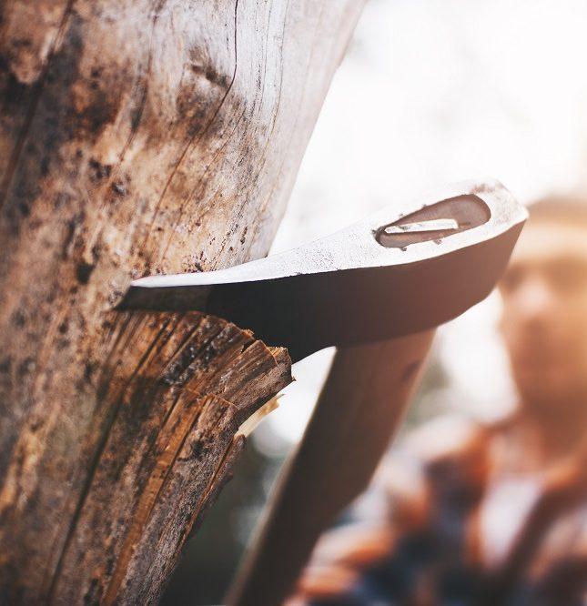reflexiones empresariales gestión empresarial planificación estratégica mitos empresariales el leñador y su hacha